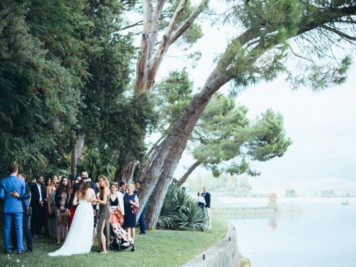 Wedding N+P